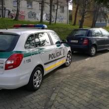 parking1 (2)