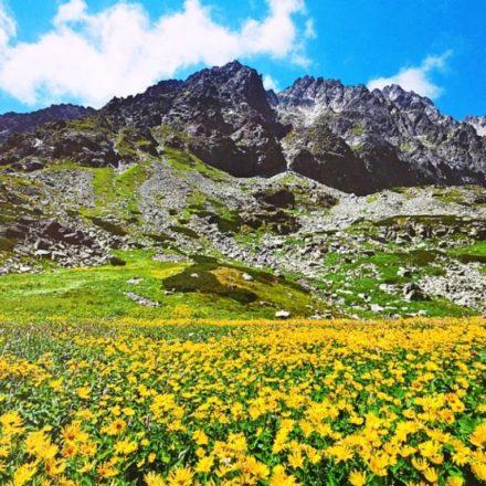 Tatry prívetivé-Karol Demuth-Velická dolina-Kvetnica