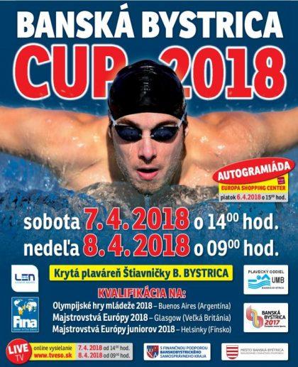 plagat bb cup 2018