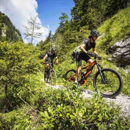 bike tour3