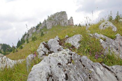 kralova-studna3