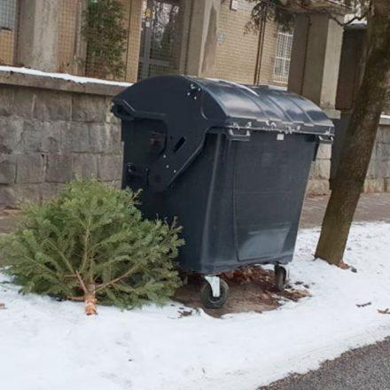 vianocny stromcek2