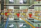 plavecke preteky