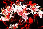 krvavé kvety