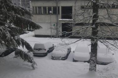 sneh1