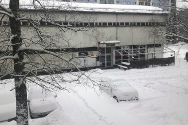 sneh2