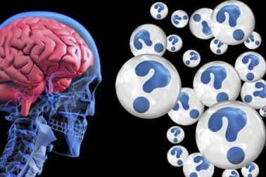 mozog3