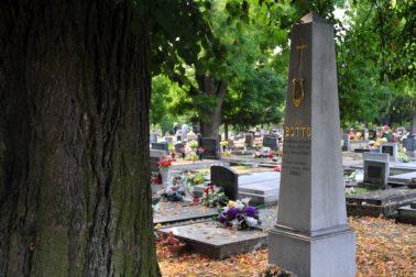 2-Botto hrob celok