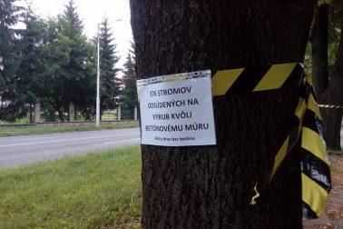 stromy bb