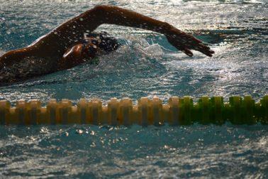 plavanie4