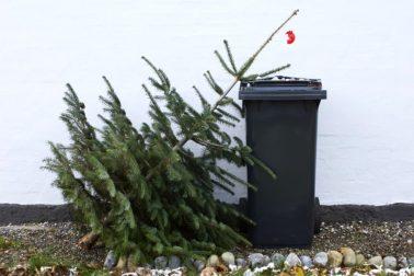 vianocny stromcek3