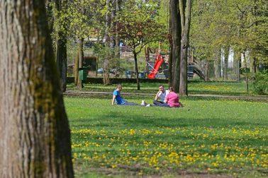 mestsky park2