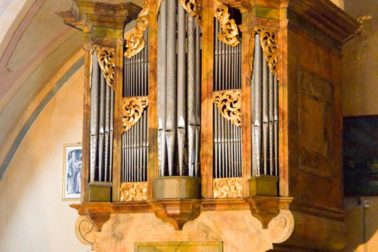 organ5