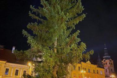 vianocny strom