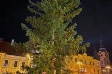 vianocny strom vecer