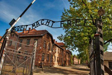 holokaust3
