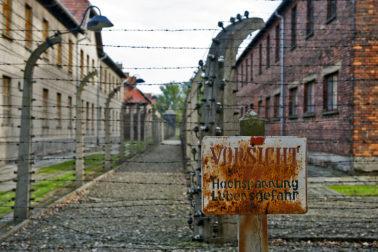 holokaust4