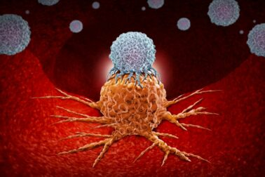 pamäťová imunita