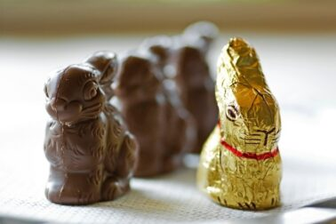 velkonocne zajace