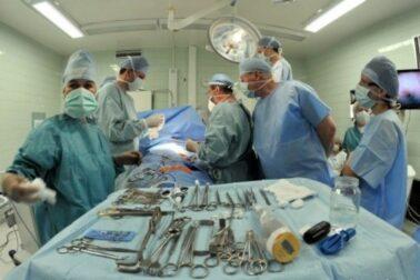 transplantacia-pecene1