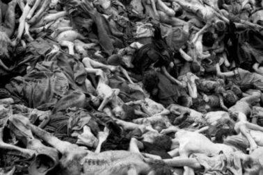 holokaust2