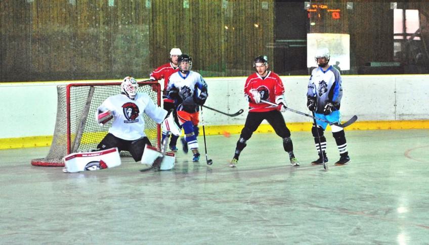 hokejbal1