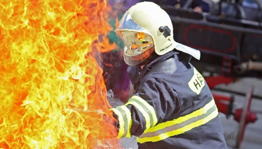 den hasicov