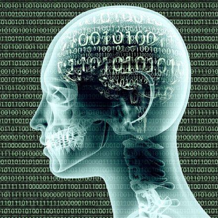 ludsky mozog