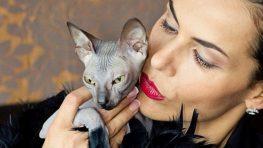 Miroslava Pastorková Kiseľová: Umelci a mačky majú spoločnú túžbu po slobode