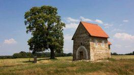 Strom zo Slovenska s príbehom opäť v prestížnej európskej ankete, môžeme zaň hlasovať