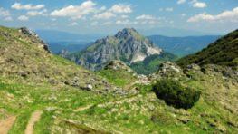 ŠOP SR víta novelu zákona o ochrane prírody, zmeny sú kľúčové