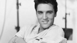 Januárové Hudobné átrium ŠVK patrí nezabudnuteľnému Elvisovi