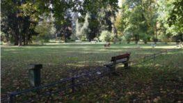Aktivisti naďalej brzdia projekt revitalizácie mestského parku, mesto prichádza o eurofondy