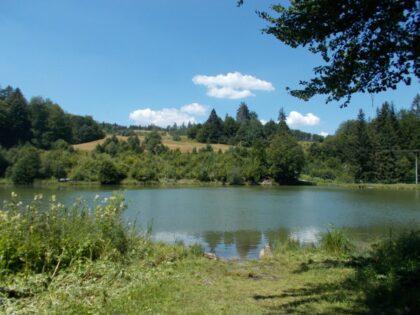 Mútne jazero