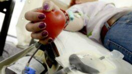 Študentská kvapka krvi začína v pondelok, kampaň sa inšpiruje piesňou Zuzany Smatanovej